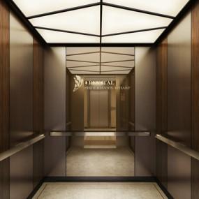 现代酒店电梯间3D模型【ID:415077942】