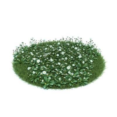 绿色草坪3D模型【ID:416931061】