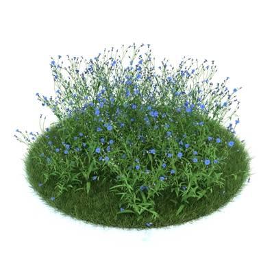 绿色草坪3D模型【ID:416935008】