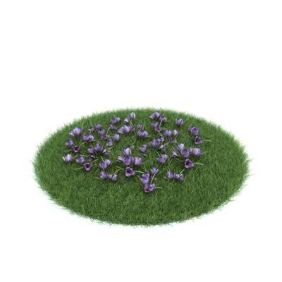 绿色草坪3D模型【ID:416935028】