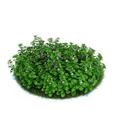 绿色草坪3D模型【ID:416937033】