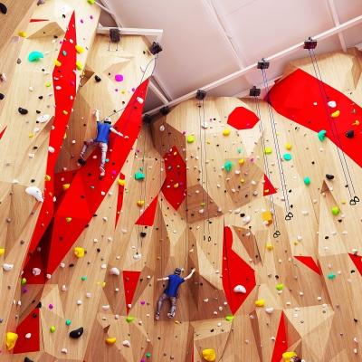 現代室內健身攀巖館3D模型【ID:227783516】