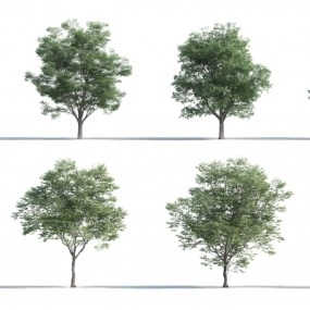 现代树组合3D模型【ID:327789674】