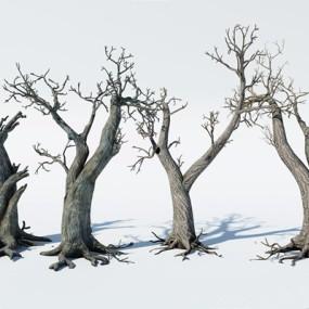 枯树3D模型【ID:328242881】
