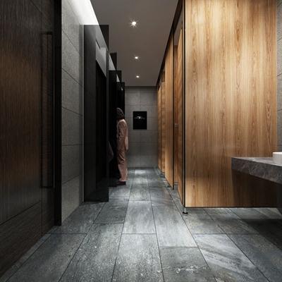 现代男女洗手间3D模型【ID:927862991】
