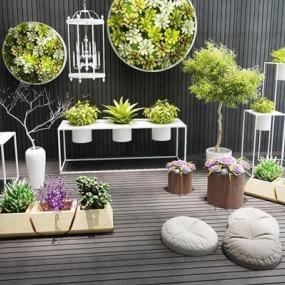 小清新植物盆栽多肉植物绿化组合3D模型【ID:327894879】