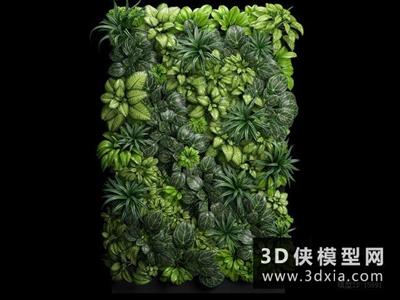 植物背景墻國外3D模型【ID:229691526】