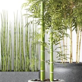 竹子盆栽3D模型【ID:327916822】
