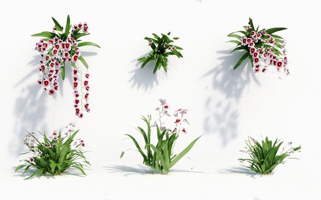 现代花3D模型【ID:620613013】