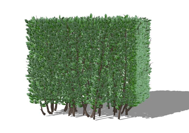 3D灌木SU模型【ID:236388135】