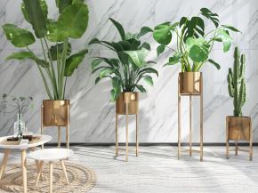 现代植物盆栽圆几摆件组合3D模型【ID:327786854】