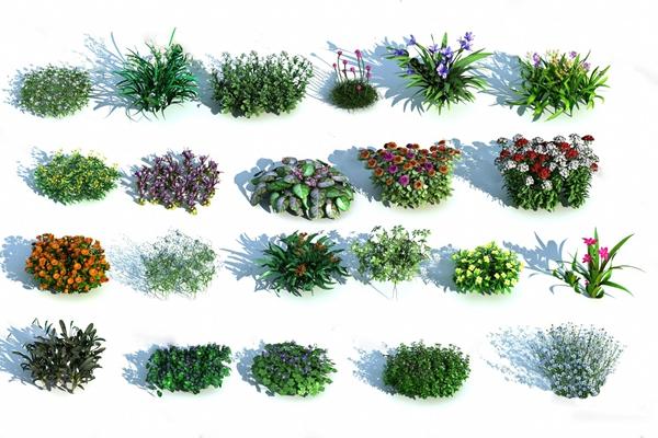 现代灌木3D模型【ID:324885534】