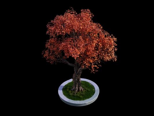 树3D模型【ID:320011634】