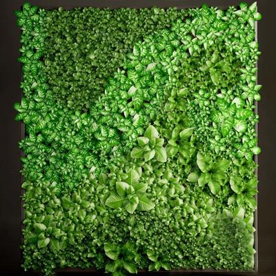 绿植墙3D模型【ID:220014892】
