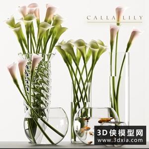馬蹄蓮玻璃魚缸模型組合國外3D模型【ID:929328860】