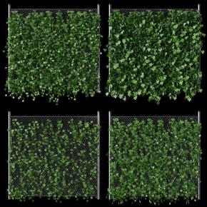 现代藤蔓植物3D模型【ID:427795209】