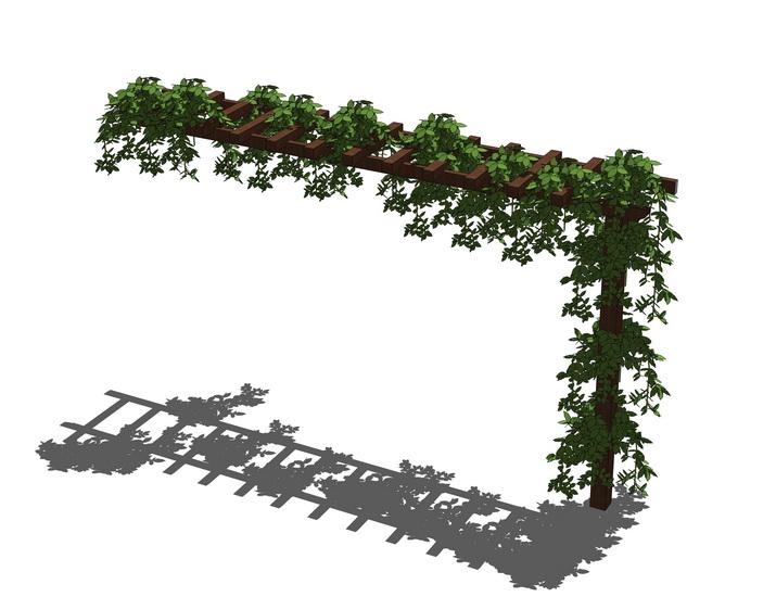 藤蔓爬藤植物SU模型【ID:236397135】