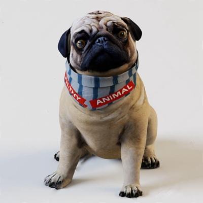 狗3D模型【ID:67087409】