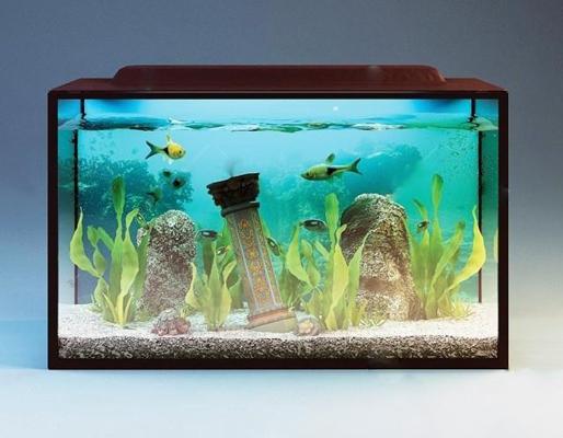 水族馆3D模型【ID:67090577】