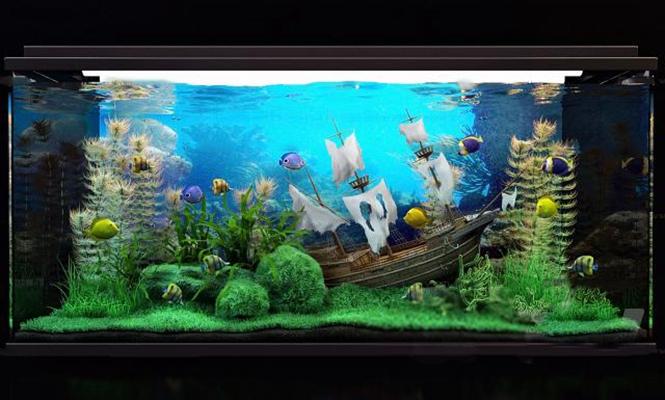 现代水族鱼缸3D模型【ID:67185679】