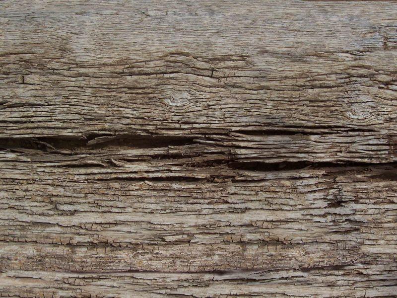 木纹木材-树皮高清贴图【ID:236754304】