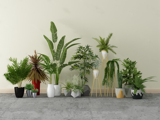现代盆栽3D模型【ID:124897812】