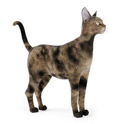 棕色猫3D模型【ID:715078841】