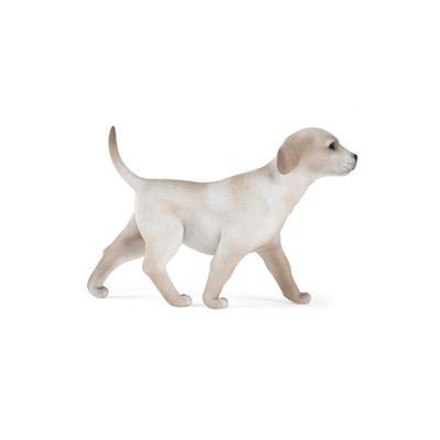 白色狗3D模型【ID:715273793】