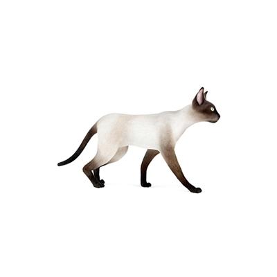 白色猫3D模型【ID:715274818】
