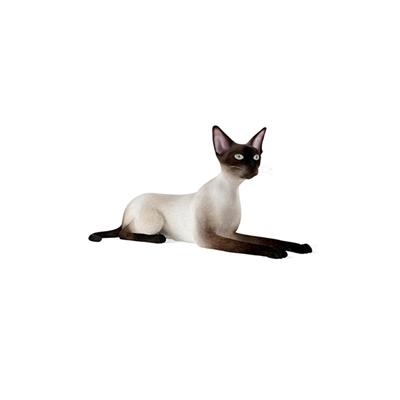 白色猫3D模型【ID:715274821】
