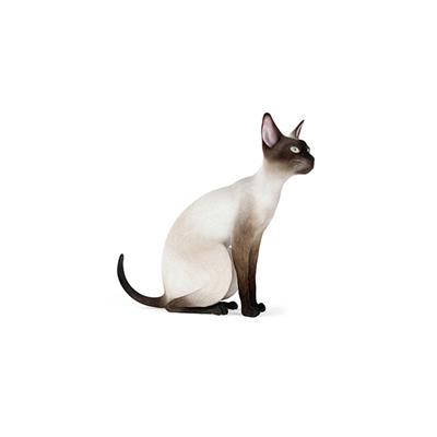 白色猫3D模型【ID:715274824】