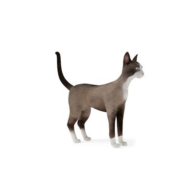 灰色猫3D模型【ID:715274847】