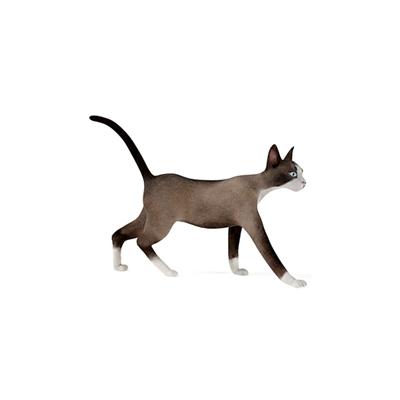棕色猫3D模型【ID:715274849】