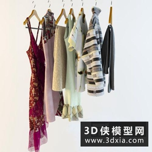 衣服服裝組合國外3D模型【ID:929853682】