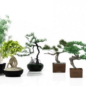 现代绿植盆栽3D模型【ID:328442823】