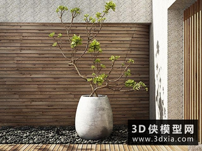 現代植物國外3D模型【ID:229436762】