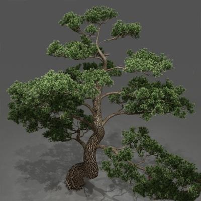 树3D模型【ID:320018654】