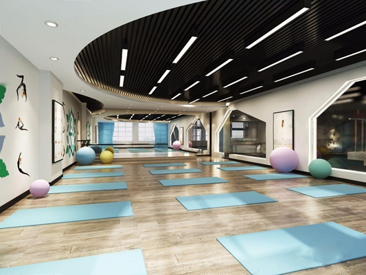现代瑜伽室3D模型【ID:927960639】