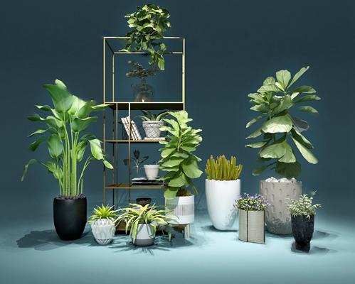 现代盆栽3D模型【ID:424894422】
