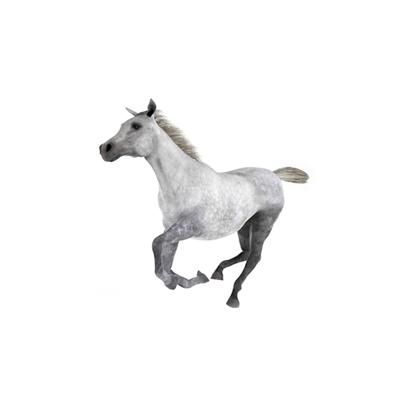 灰色马3D模型【ID:815273663】