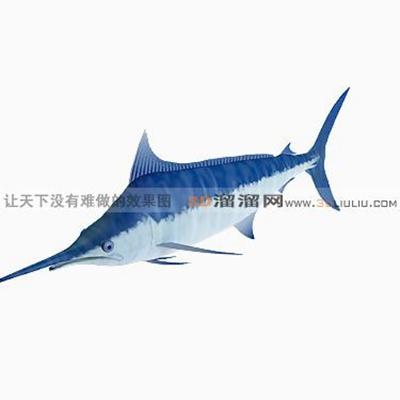 鱼13D模型【ID:817218885】