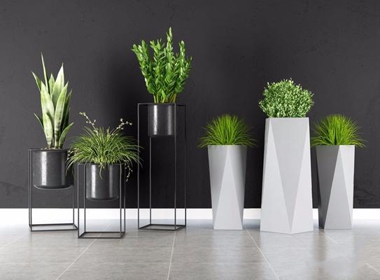 绿植盆栽植物组合3D模型【ID:328246817】