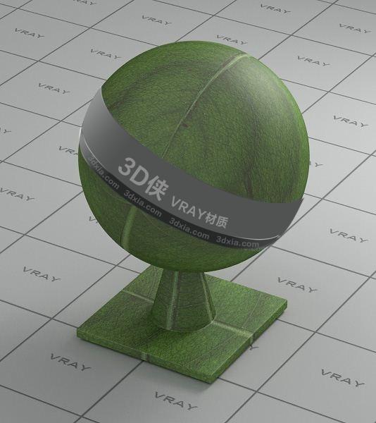 綠色樹葉Vray材質【ID:836467191】