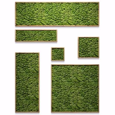 現代植物背景墻組合3D模型【ID:127768116】