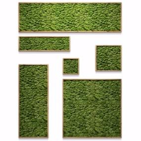 现代植物背景墙组合3D模型【ID:127768116】