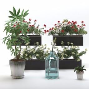 现代植物盆栽3D模型【ID:328441896】