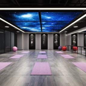 现代瑜伽舞蹈教室3D模型【ID:527802035】