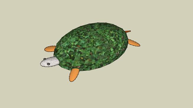 绿鳖(佛罗里达州平均养殖规模)SU模型【ID:740068578】