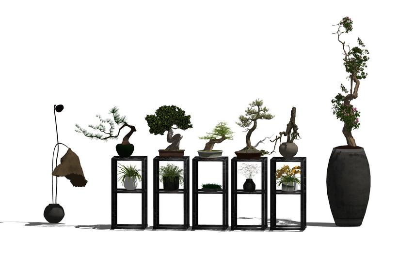 中式盆栽SU模型【ID:136613865】