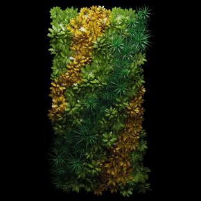 現代植物背景墻3D模型【ID:127752101】